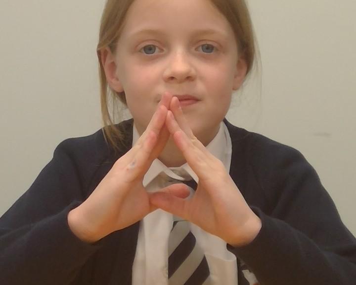 Sign language encourages class participation