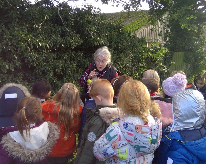 Botanist teaches children about trees