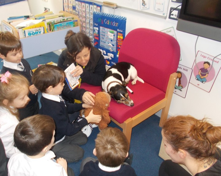 Dog assists in lessons